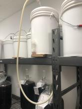 Brewing Oasis - Photo 4